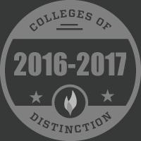 badge 2016 2017