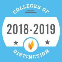 badge 2018 2019